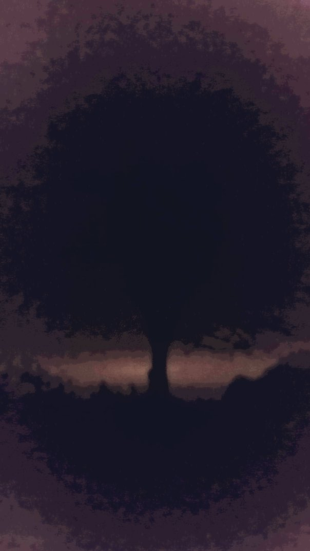 night tree two